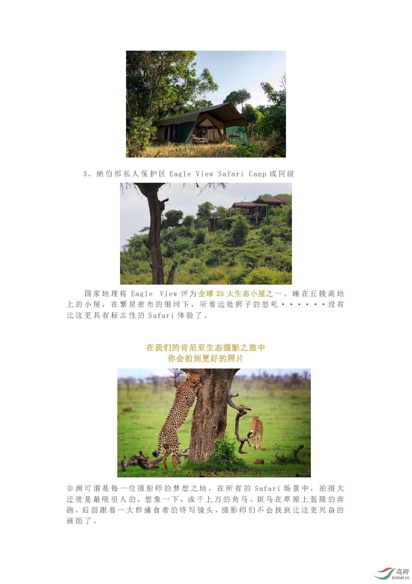 2019 国庆团  与迪士尼自然摄影师,国庆一起到非洲拍摄真实的狮子王_页面_09.jpg