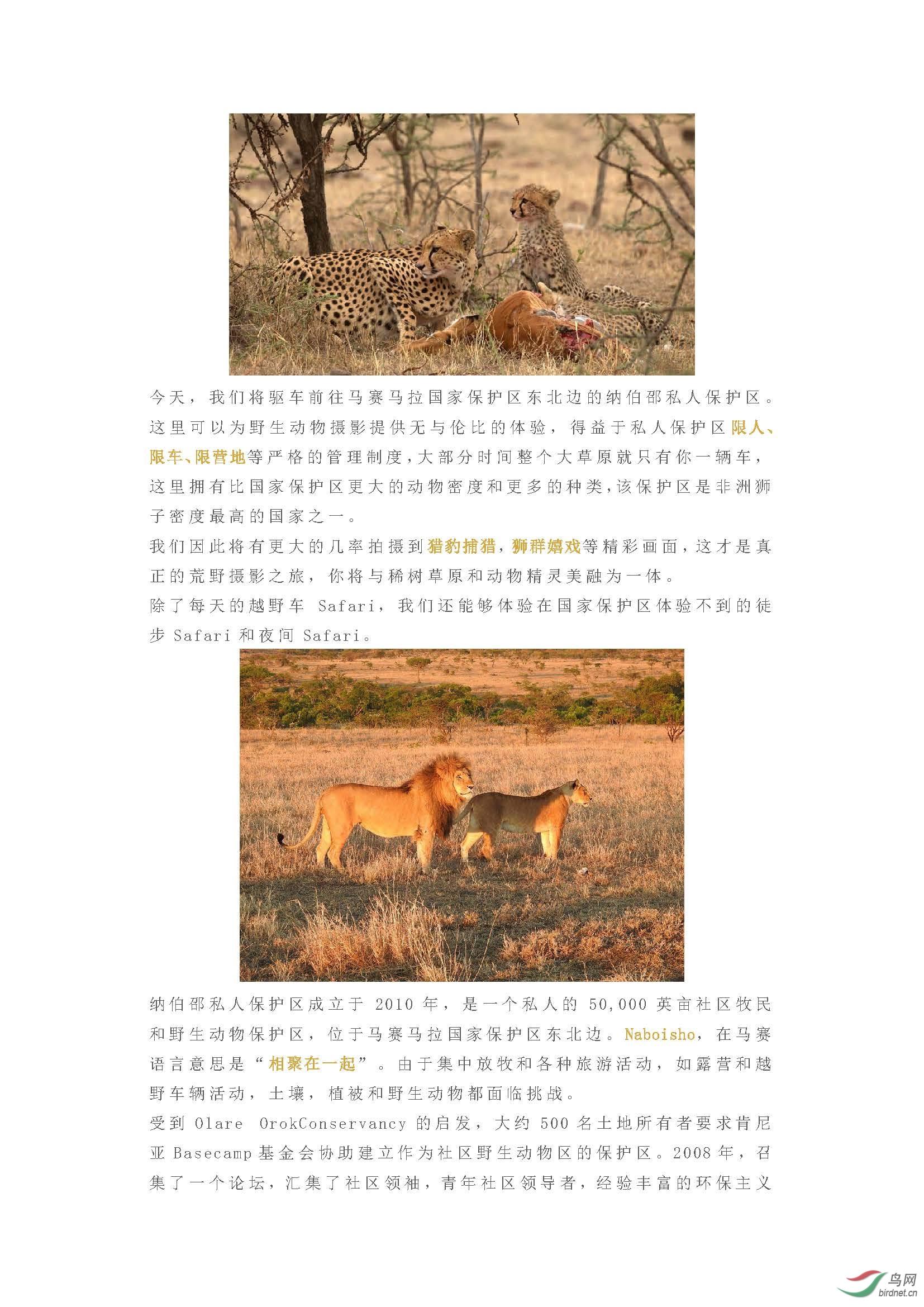 2019 国庆团  与迪士尼自然摄影师,国庆一起到非洲拍摄真实的狮子王_页面_07.jpg
