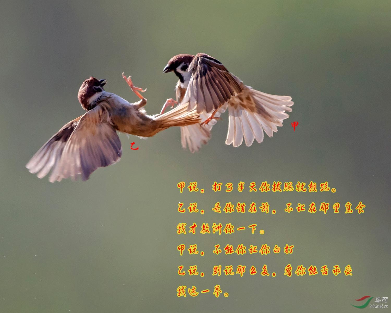 10..jpg