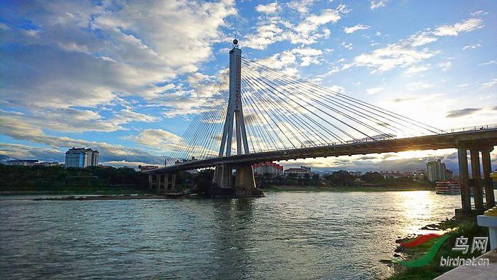 大桥--3.--大桥-A--3.jpg