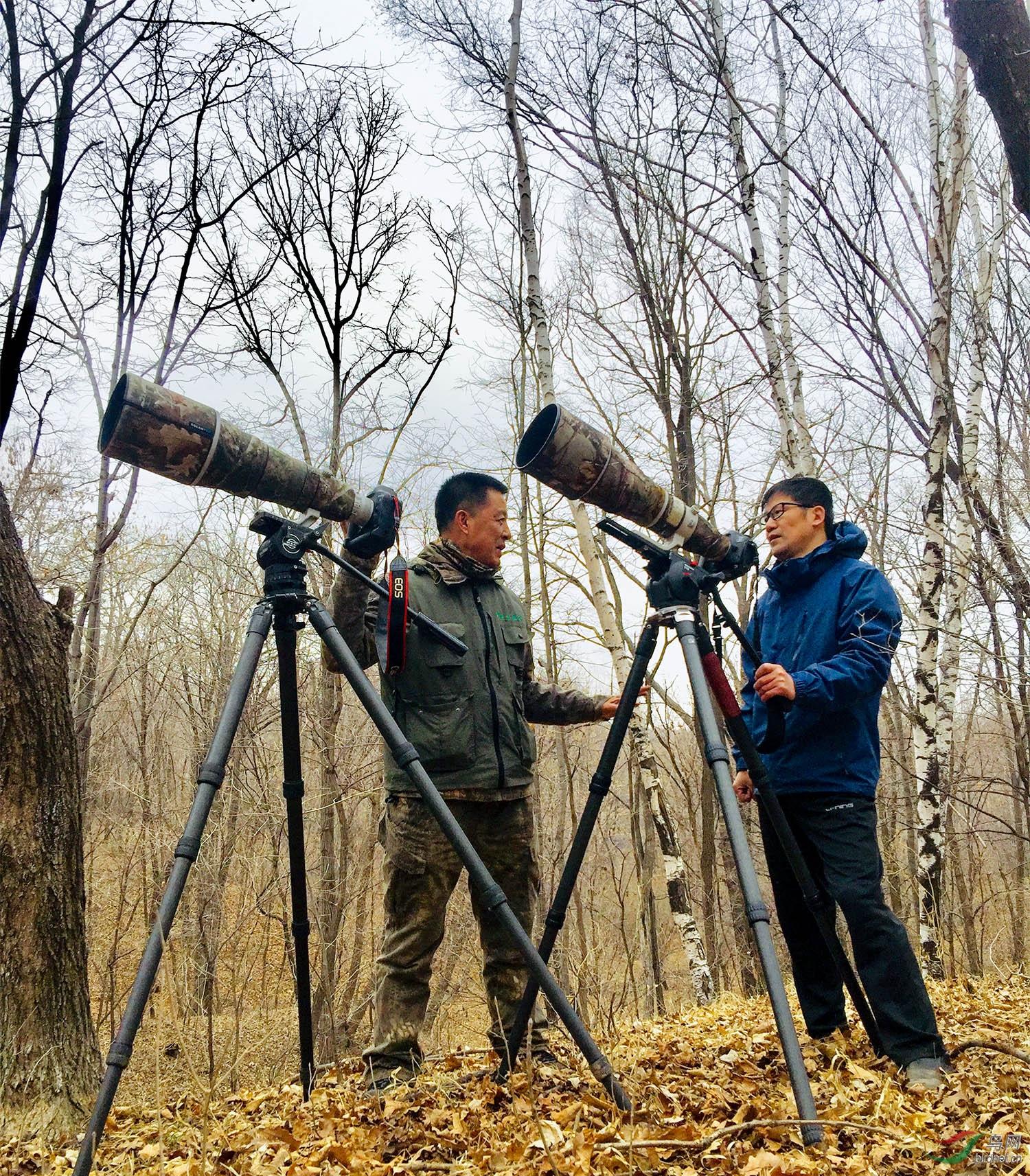 金广山和志愿者在监测苍鹭做记录