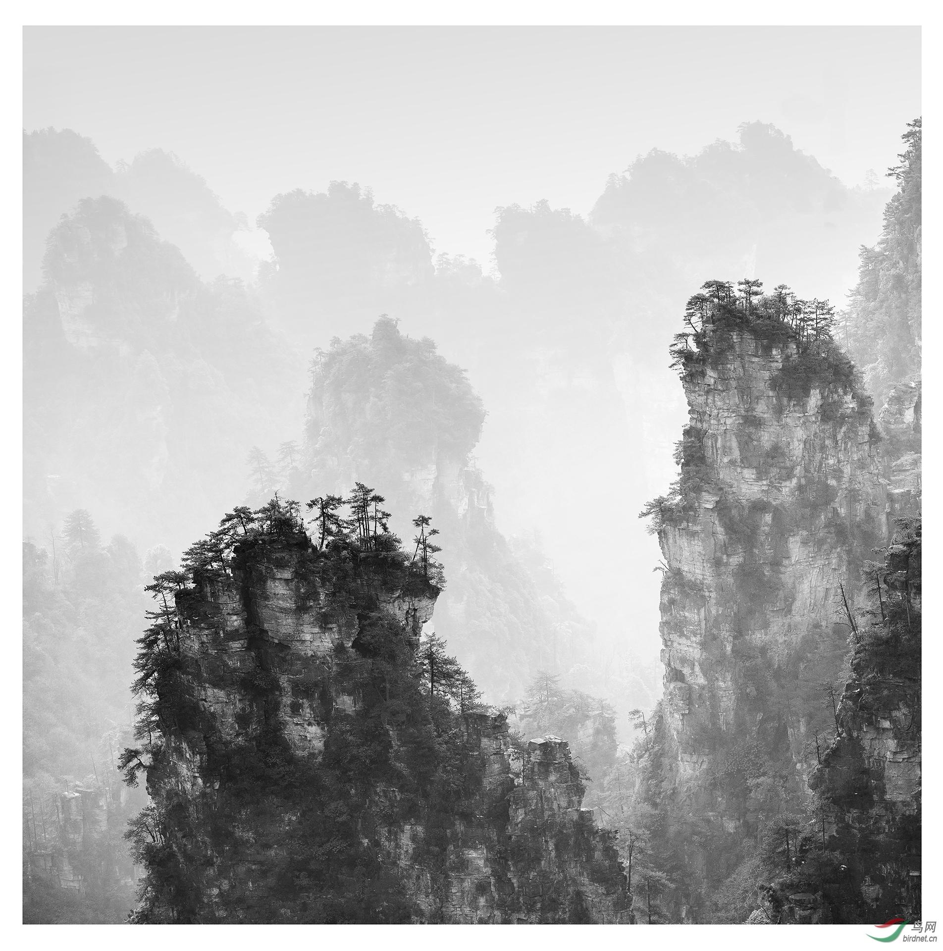 0209.水墨张家界 纯自然风光-张奎-宾宾 拷贝.jpg