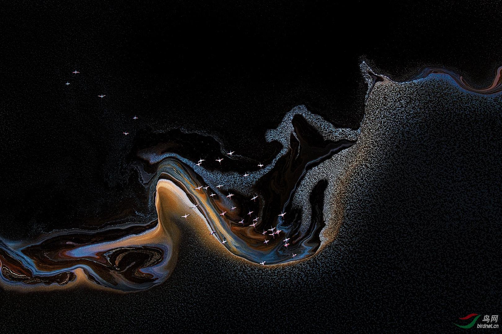 0307. 12087_Flamingoes over Lake Magadi_艺术(画意)摄影.jpg