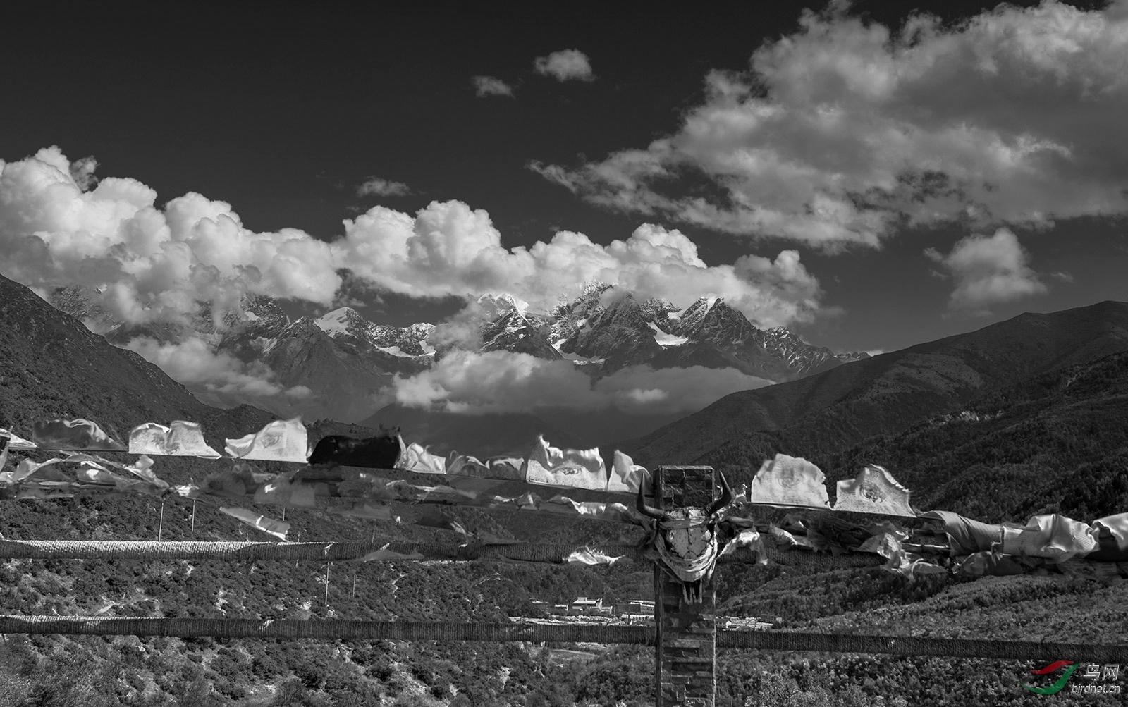 玉岭雪山1(1)1.jpg