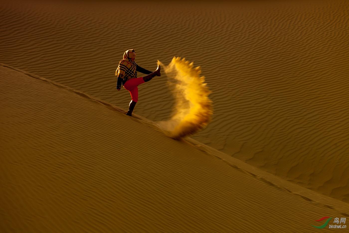 DO5890 陈凤山 B2 沙漠一撇A Scene of Desert.jpg