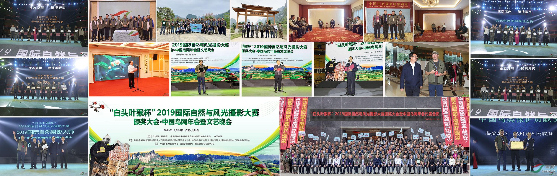龙州县2019年年会-01.jpg
