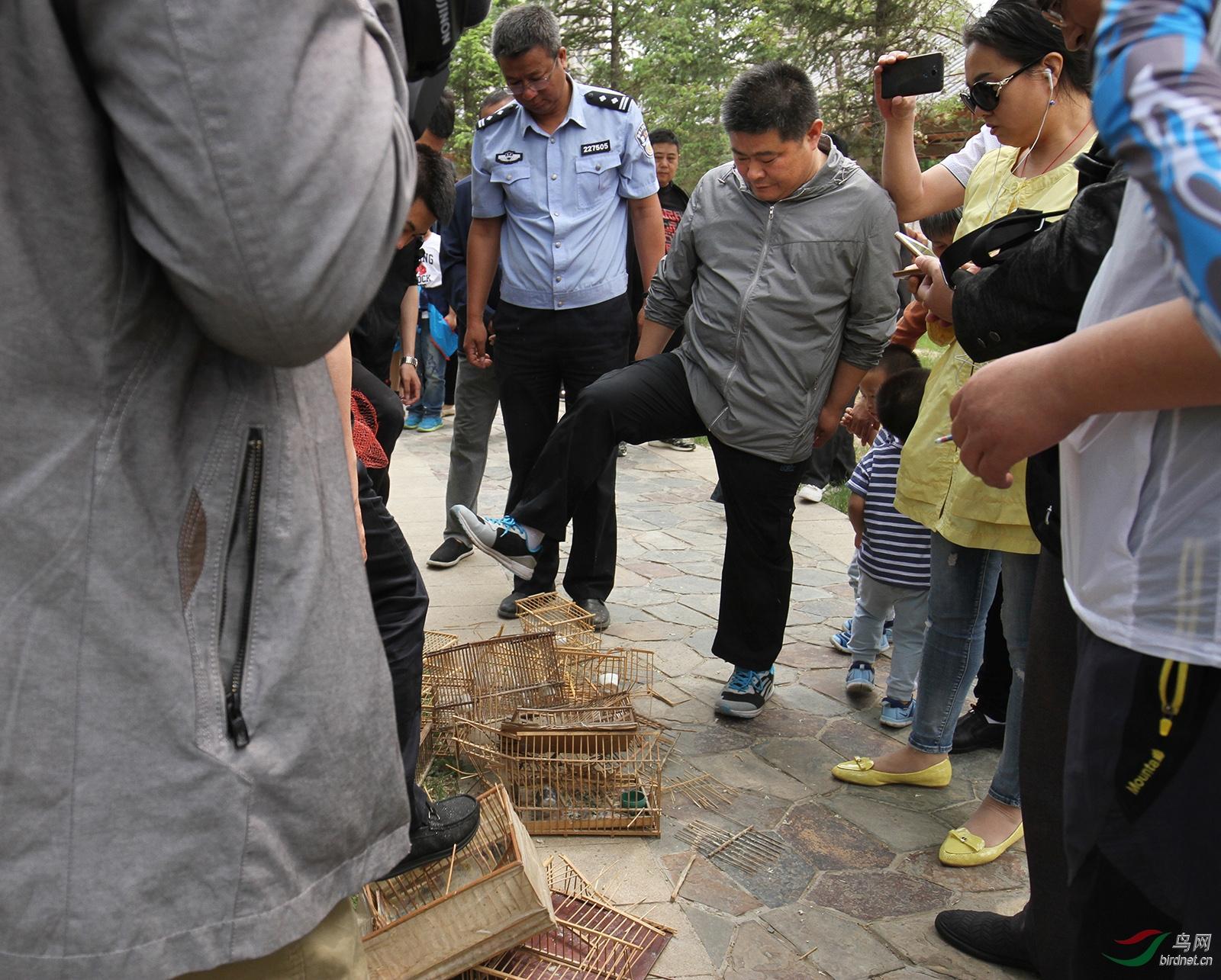 野保志愿者和林业公安到鸟市打击收缴贩卖野生动物.jpg