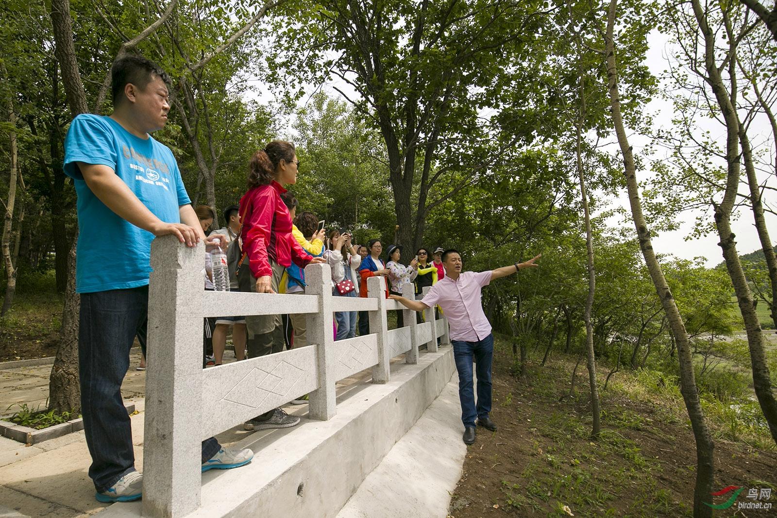 野保副会长、秘书长金广山为参观苍鹭繁衍区域的老师们介绍苍鹭发育情况.jpg
