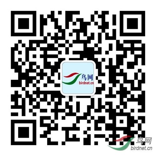 微信图片_20200229202644.jpg