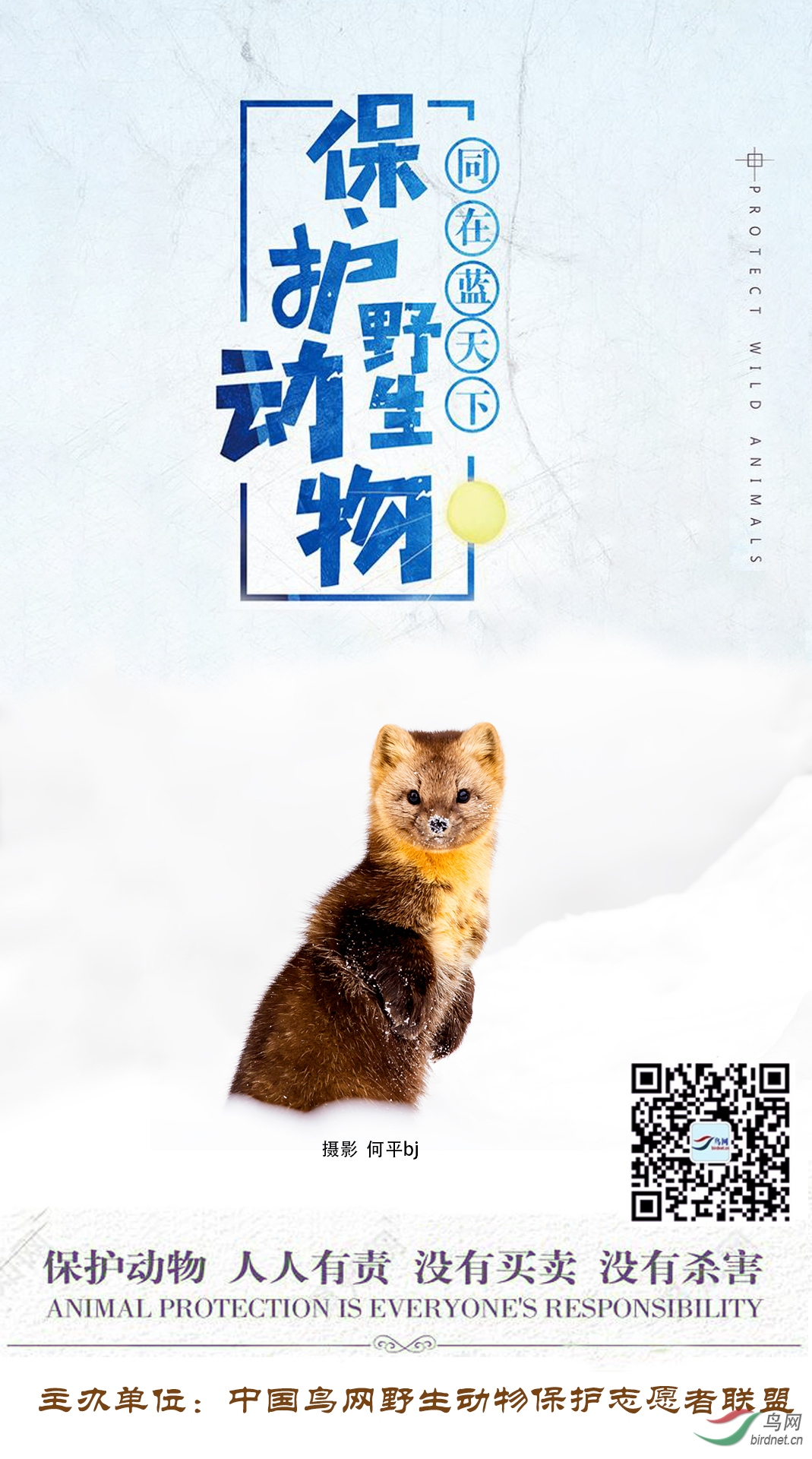 野生动物保护海报-何平.jpg