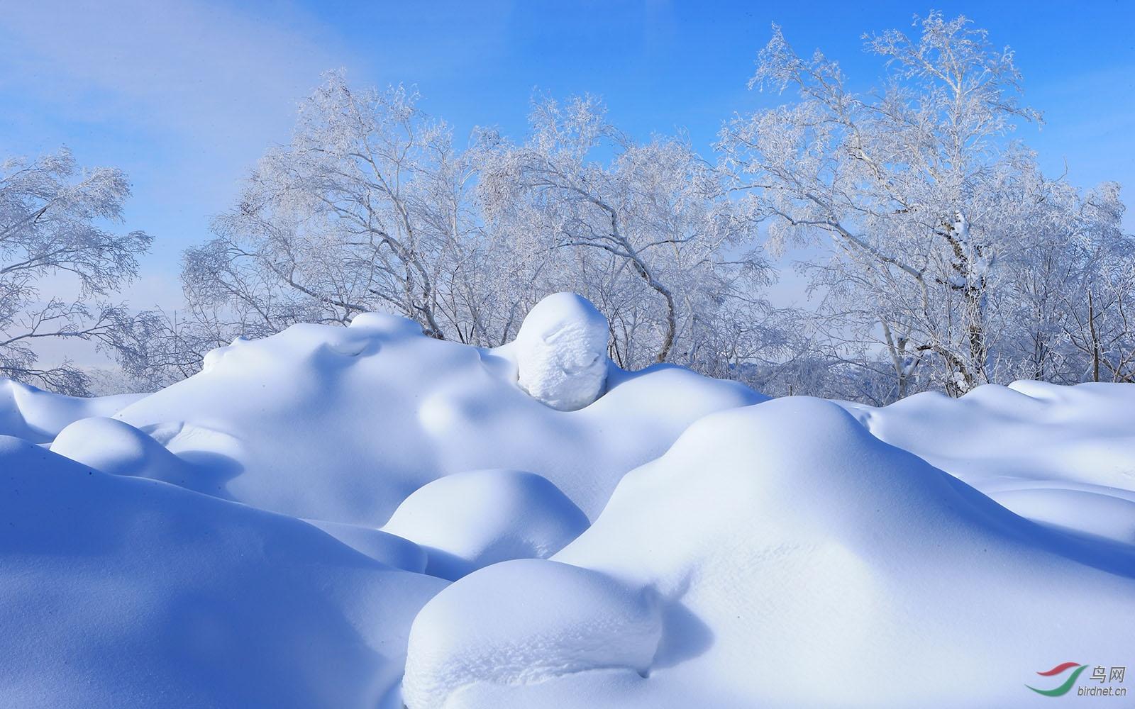冬季02.jpg