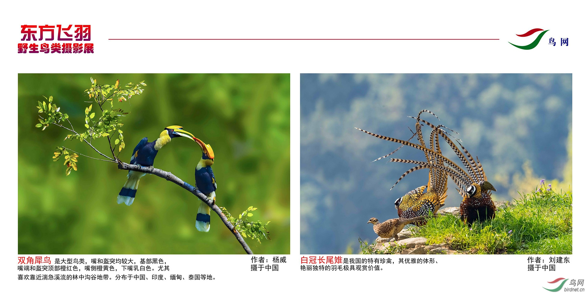 1_东方明珠摄影展照片_29.jpg