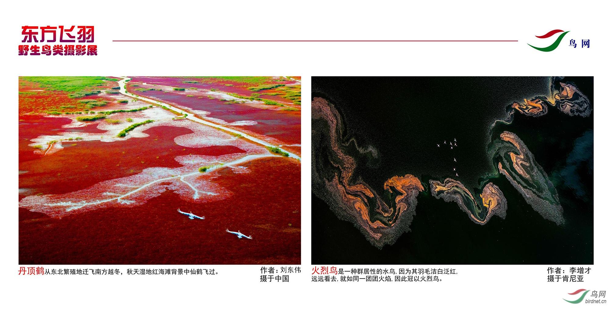 1_东方明珠摄影展照片_30.jpg