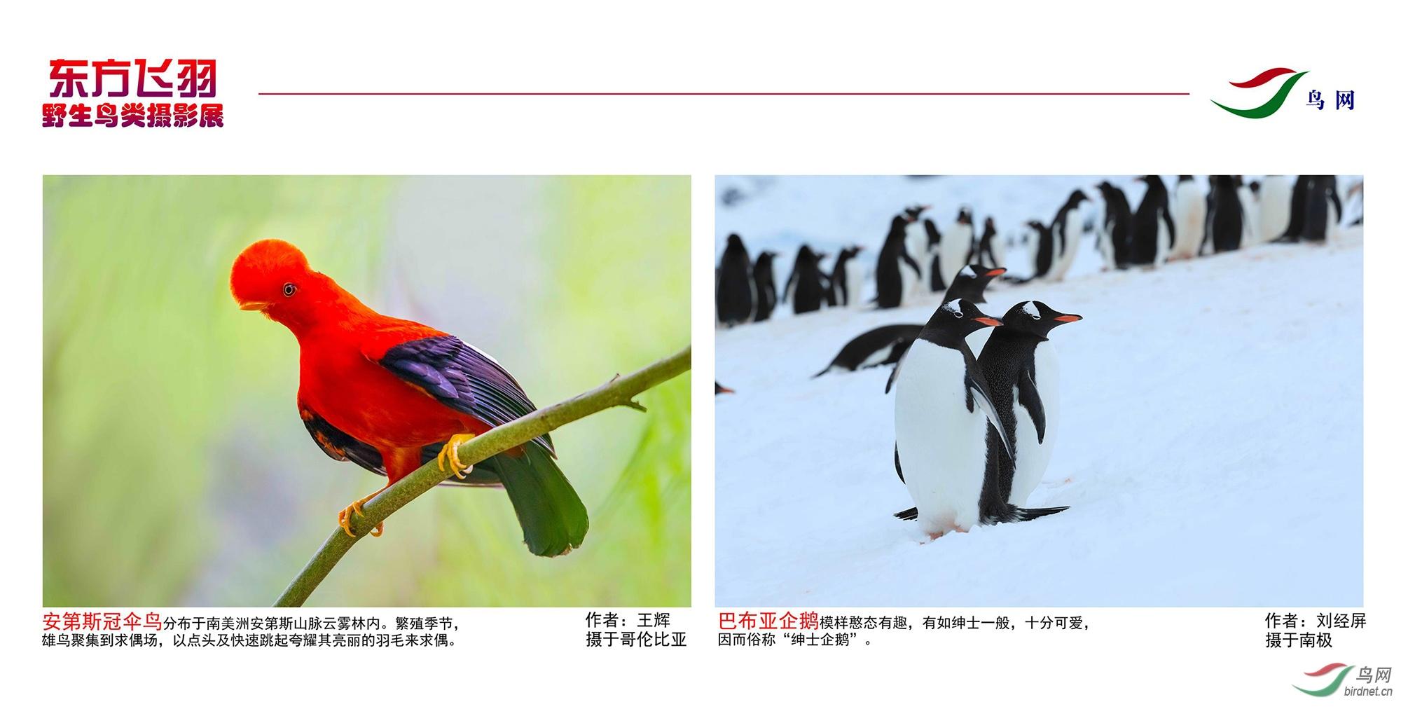 1_东方明珠摄影展照片_00.jpg
