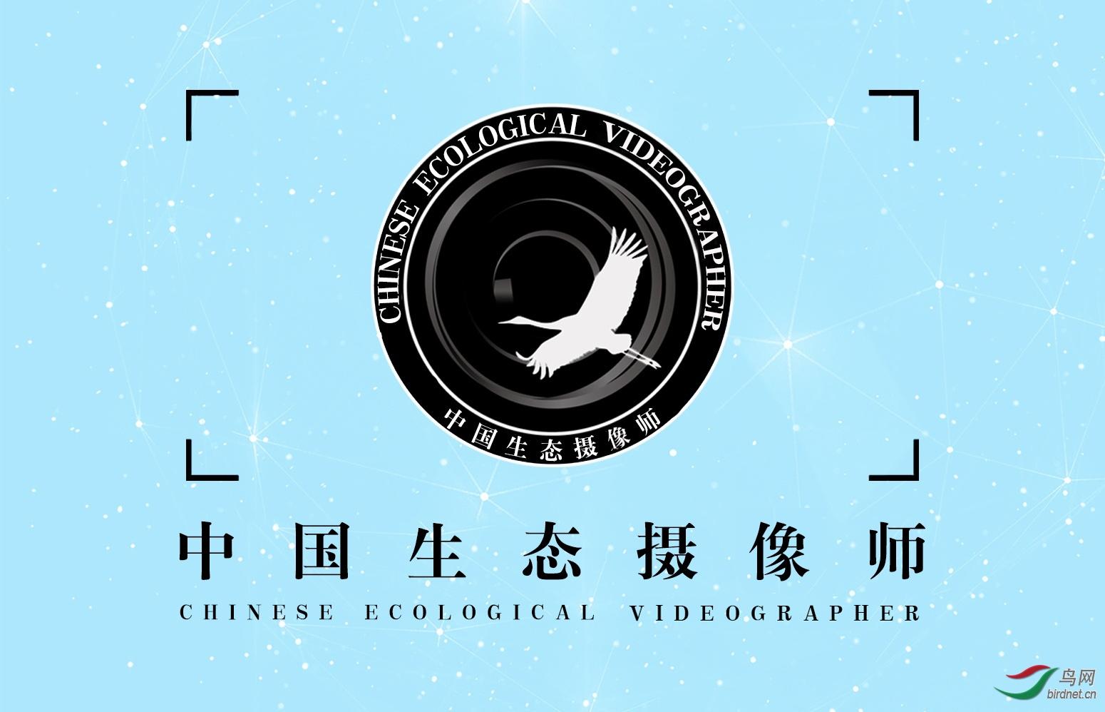 中国生态摄像师.jpg