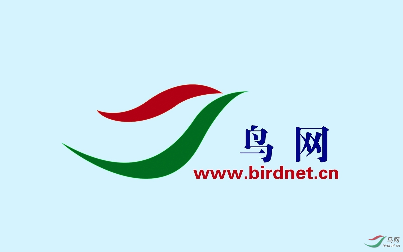 鸟网logo.jpg