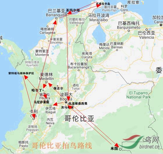 哥伦比亚拍鸟路线图.jpg