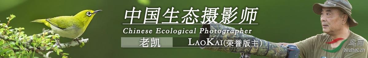 微信图片_20200928103440.jpg