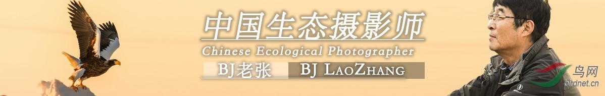 微信图片_20201122185334.jpg