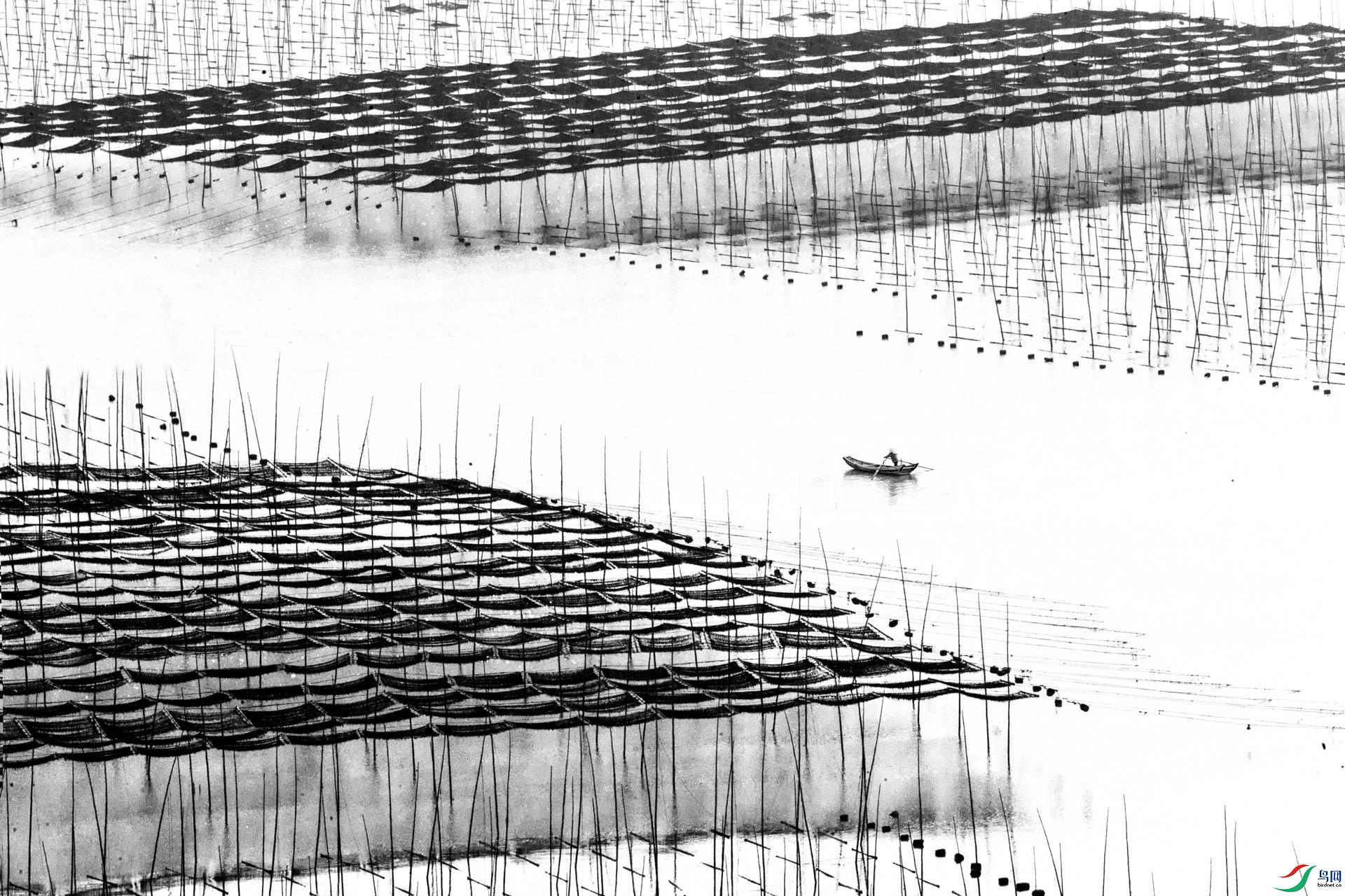 海上织锦a-1.jpg