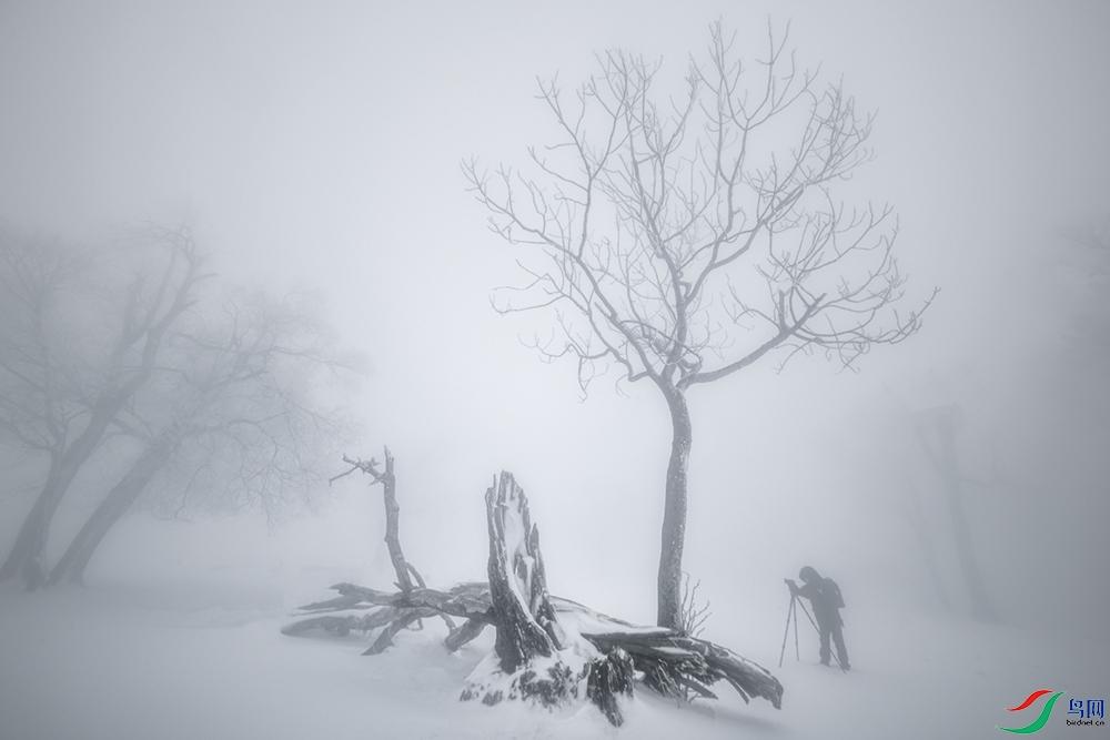 风雪摄影人1.jpg