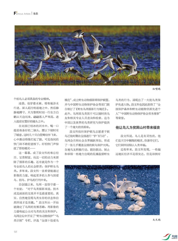 段文科-今日辽宁3.jpg