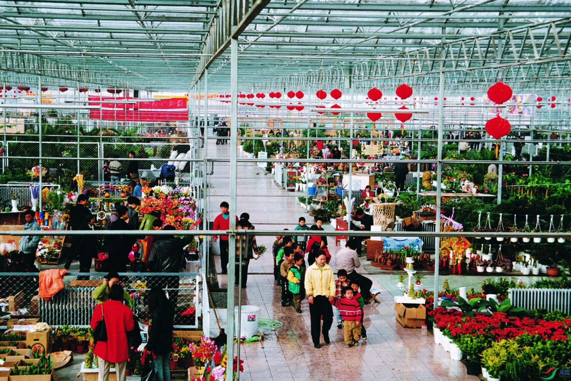 27花卉市场.jpg