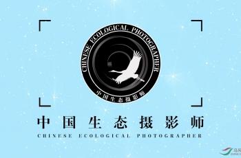 中國生態攝影師名單-不斷更新中...