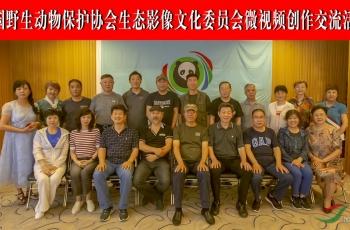 中动协生态委北京微视频沙龙活动纪实