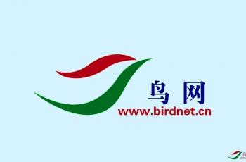 中国鸟网关于保护全体会员作品版权的温馨提示