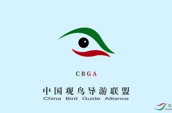 中國觀鳥導游聯盟在云南保山宣告成立