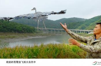 #我和我的祖国#保护野生动物,我们摄影人在行动