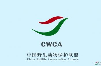中國野生動物保護聯盟