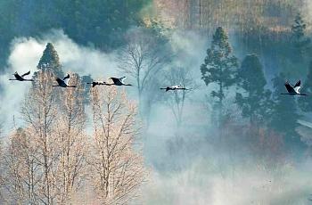 翠烟袅袅,穿越云雾