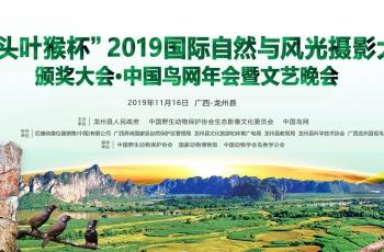 中国鸟网2019年年会在广西龙州县胜利召开——报到篇