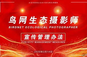 鳥網生態攝影師宣傳管理辦法