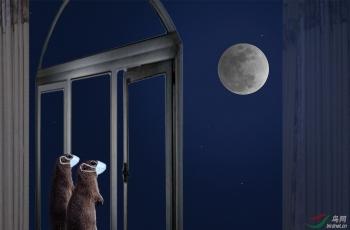鼠年正月十五夜(祝贺荣获首页创意精华)