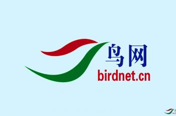 鸟网资深顾问和高级顾问晋级管理办法