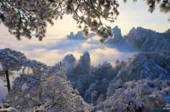 雪后黄山(祝贺吉林鸟痴老师荣获综合首页精华)