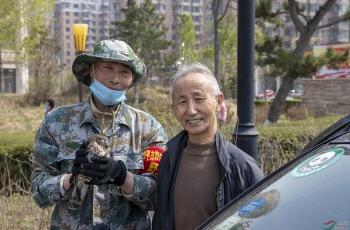 中国鸟网野保四平市野保志愿者救助一只国家二级鹰鸮