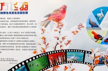 """第九届""""东方飞羽""""野生鸟类生态摄影展在上海隆重开幕"""