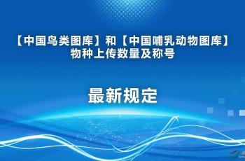 中国鸟类图库和中国哺乳动物图库最新管理规定