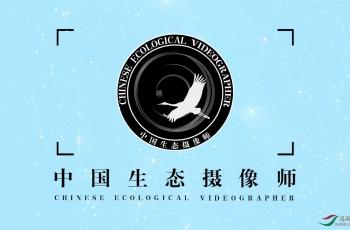 中国生态摄像师晋级管理办法