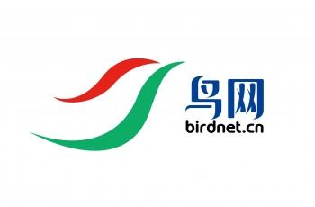 2021鸟网LOGO全面升级!