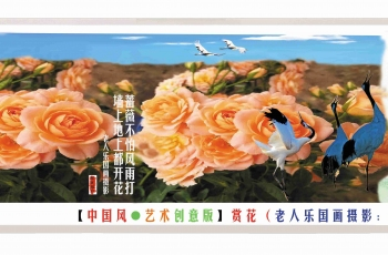 【中國風●藝術創意版】賞花(老人樂國畫攝影:贊美薔薇花)