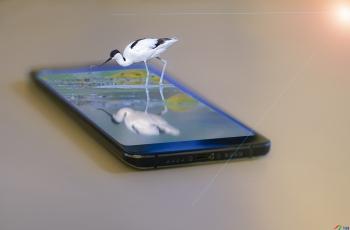 手機里有乾坤