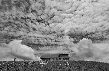故乡的云   ----   祝贺荣获黑白影像首页精华!