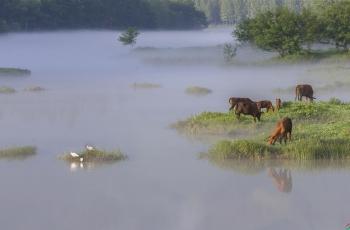《寂静的河畔》