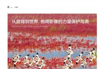 《今日辽宁》发文报道鸟网创始人段文科