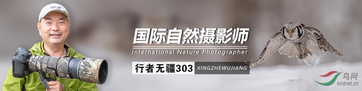 G 022  行者无疆303:生命因摄影而精彩,精彩因瞬间而永恒